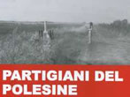Partigiani del Polesine. Nelle fotografie di Mario Dondero -  Events Fratta Polesine - Shows Fratta Polesine