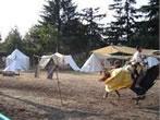 Medieval festival -  Events Pergine Valsugana - Shows Pergine Valsugana