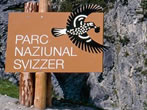Swiss National Park -  Events Livigno - Attractions Livigno